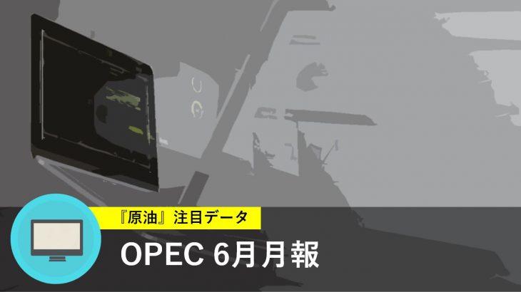 OPEC 6月月報